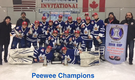 Peewee's Win The Cup 2018
