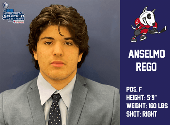 Anselmo Rego 8th Round 145th Overall by Niagara IceDogs
